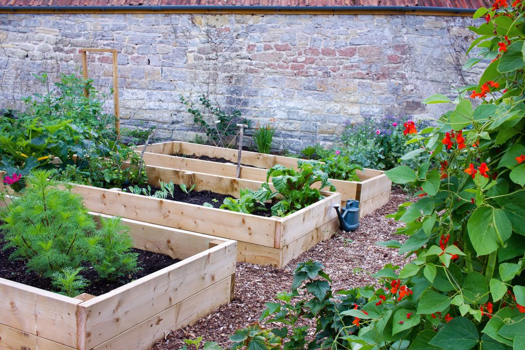 Rustic Country Vegetable & Flower Garden with Raised Beds